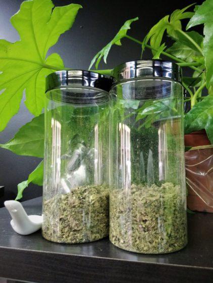 sachet trim weed cannabis pas cher amnesia strawberry lyon pas cher