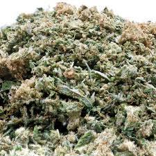 Trim cannabis CBD Amnesia Indoor bestown lyon