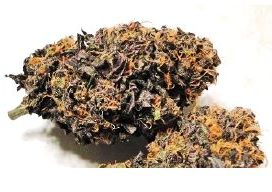 purple cbd bestown shop
