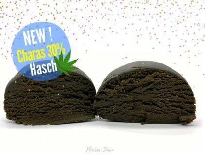 haschich charas cannabis cbd